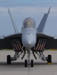 Photo: United States Navy, McDonnell Douglas F-18 Hornet