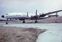 Photo: Trans Atlantic Argentina, Lockheed Super Constellation, LV-BLI
