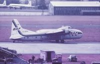 Photo: British Air Ferries - BAF, Bristol 170 Mk.32 Superfreighter, G-APAV