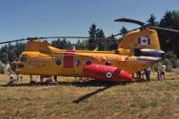 Photo: Canadian Forces, Boeing-Vertol 107-II, 11310