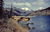 Photo: Untitled, Cessna 150
