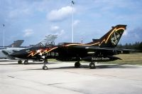 Photo: Luftwaffe, Panavia Tornado, 44+21