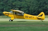 Photo: Aeroclub Brasschaat, Piper PA-18 Super Cub, OO-ATY