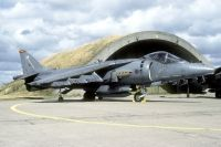 Photo: Royal Air Force, Hawker Siddeley Harrier, ZD409