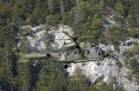 Photo: Swiss Air Force, Eurocopter AS-532 Cougar, T-333