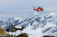 Photo: Swiss Air Force, Aerospatiale Super Puma, T-313