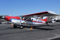Photo: Untitled, Pilatus PC-6 Turbo Porter, N5308F