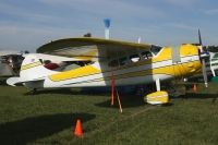 Photo: Untitled, Cessna 195, N1080D