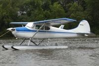 Photo: Untitled, Cessna 170, N2504C