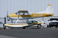 Photo: Untitled, Cessna 185 Skywagon, N4319R