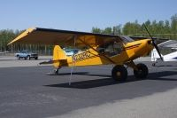 Photo: Untitled, Piper PA-18 Cub, N232RC