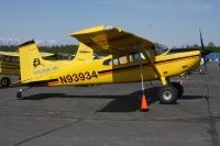 Photo: Holiday Air, Cessna 185 Skywagon, N93934