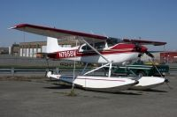 Photo: Untitled, Cessna 180, N7958V