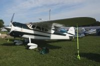 Photo: Untitled, Cessna 195, N3004B