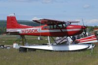 Photo: Untitled, Cessna 180, N7560K