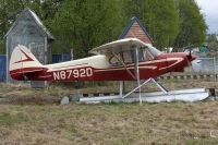Photo: Untitled, Piper PA-18 Super Cub, N8792D