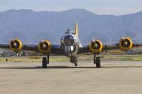 Photo: Untitled, Boeing B-17 Flying Fortress, N9563Z