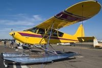 Photo: Untitled, Glide Aero Yellow Swan, N57YS