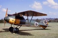 Photo: Luftwaffe, Albatros DV, D5390